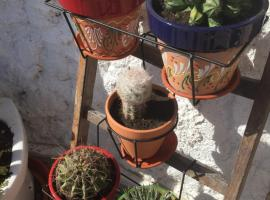 Hotel Photo: The Cave of Dreams