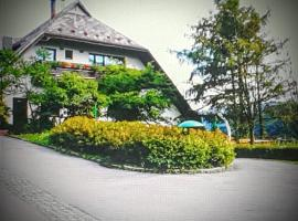 A picture of the hotel: Hotel Trojane