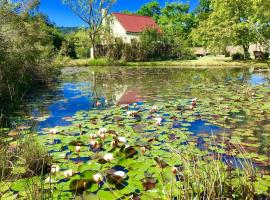 Forest Edge - Nature Lovers' Retreat Rheenendal South Africa