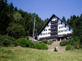 Hotel Photo: Hotel Tisa Pohorje
