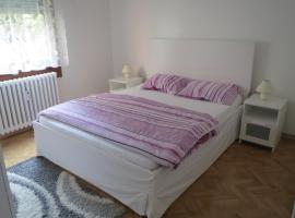 A picture of the hotel: Savica Apartment