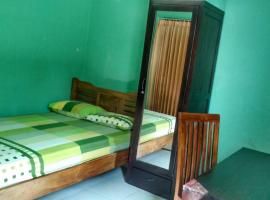 A picture of the hotel: Holigrin Homestay