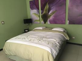 Hotel Photo: Apartment in Santa Tecla
