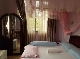 Hotel Photo: Northern Breeze Hotel Tabata