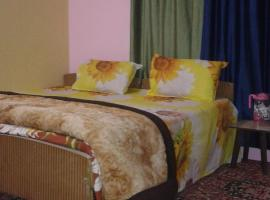 Hotel kuvat: Star Guest house