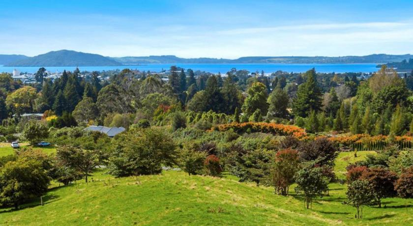 Best time to travel Rotorua Aww Sheep-Uninterrupted Magnificent View