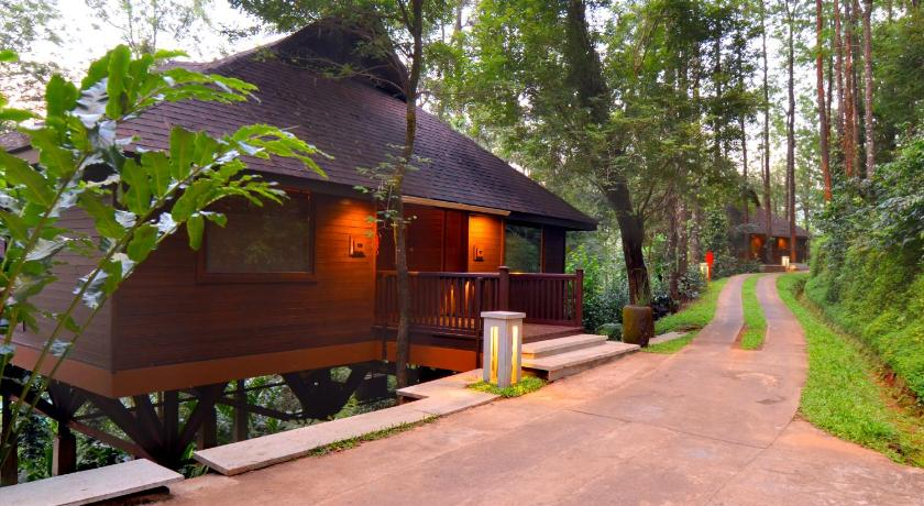 More About The Tamara Coorg