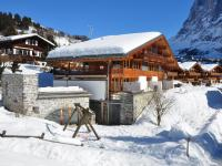 Apartment FSG01, Appartamenti - Grindelwald