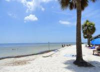 Charming House, Holiday homes - Port Richey