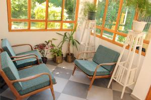 Bed & Breakfast Zeravica, Bed & Breakfasts  Sremski Karlovci - big - 22