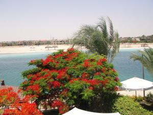 Photo of Villa Marina Egypt