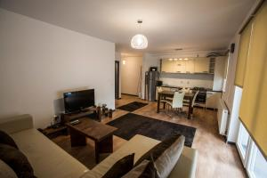 Boson Rent Apartament Sibiu, Appartamenti  Sibiu - big - 6