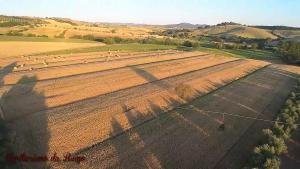 Agriturismo da Remo, Farm stays  Magliano in Toscana - big - 11