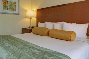 Double Room with Mobility Access - Non-Smoking