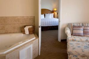 Deluxe King Room with Partial Water View