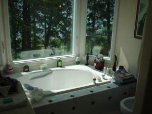 Deluxe Suite with Lake View