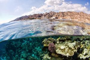 Photo of Canyon Estate Residence Dahab