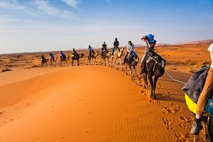 Camel Bivouac Merzouga, Luxury tents  Merzouga - big - 61