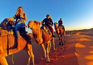 Camel Bivouac Merzouga, Luxury tents  Merzouga - big - 54