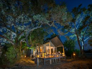 Special Offer - Luxury Tent - Safari Package