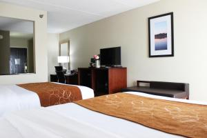 Queen Suite with Two Queen Beds and Sofa Bed - Disability Access/Non-Smoking