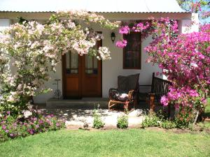 Elephant River Guest House, Penziony  Clanwilliam - big - 4