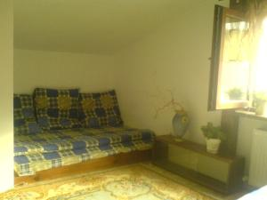 Guest House on Vetrova, Affittacamere  Odessa - big - 6
