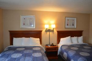 Double Room with Two Double Bed
