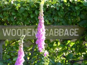 Wooden Cabbage (6 of 56)