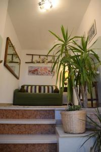 La Balocca, Bed & Breakfast  Montefiascone - big - 39