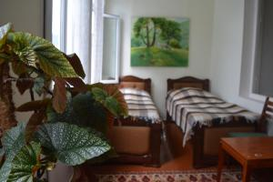 Sweet Home, Inns  Dilijan - big - 53