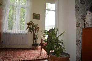Sweet Home, Inns  Dilijan - big - 13