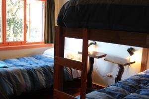 Bed in 3-Bed Mixed Dormitory Room with Lake View