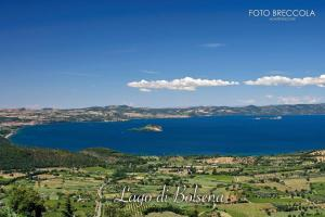 La Balocca, Bed & Breakfast  Montefiascone - big - 34