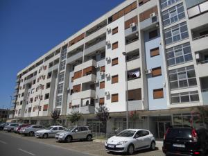 Apartment Vesna, Appartamenti  Podgorica - big - 10