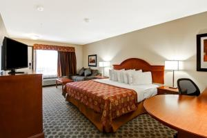 Business King Suite