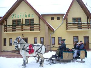Photo of Pension Dariana