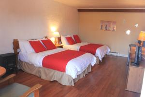 Regular Quadruple Room with Two Double Beds