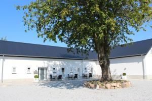 272 Bed & Breakfast, Bed and Breakfasts  Esbjerg - big - 64