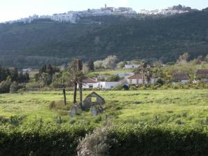 Rancho los transparentes, Holiday homes  Vejer de la Frontera - big - 50