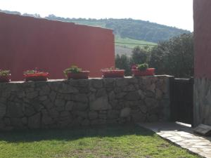 Rancho los transparentes, Holiday homes  Vejer de la Frontera - big - 52