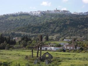 Rancho los transparentes, Holiday homes  Vejer de la Frontera - big - 17