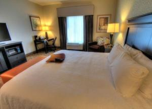 Hampton Inn Pigeon Forge, Hotels  Pigeon Forge - big - 3
