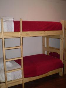 Single Bed in Dormitory Room (4 people)