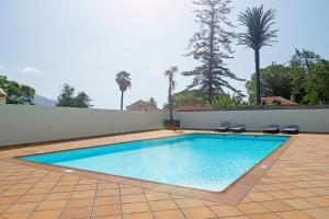 Jasmineiro III by Travel to Madeira, Apartmány  Funchal - big - 32