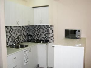 Studio-Apartment, Tbilisi, Apartments  Tbilisi City - big - 12