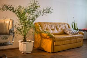 Nice & Cozy by the River Mtkvary, Apartmány  Tbilisi City - big - 5