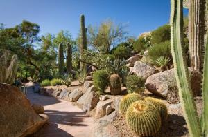 The Canyon Suites at The Phoenician, a Luxury Collection Resort, Scottsdale, Resort  Scottsdale - big - 38