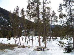 The Pines Condominiums - Keystone