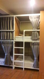 Bunk Bed in Mixed Dormitory Room (Upper bed)